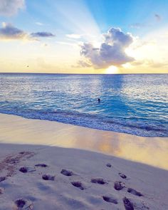 """The future belongs to those who believe in the beauty of their dreams."" - Eleanor Roosevelt  #stmaarten #stmartin #sintmaarten #beach #ranta #rantaloma #loma #vacation #caribbean #karibia #travel #matkalla #reissu #sunset #auringonlasku #mahobeach #quotes #inspirational (via Instagram)"