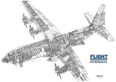 I wanted to share some aircraft cutaways which I came across. Cargo Aircraft, Military Aircraft, Jet Engine Parts, C130 Hercules, Ac 130, Aviation Forum, Airplane Design, Aircraft Photos, Military Pictures