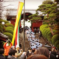 Those who wear kimono go up the stairs to the main hall of the temple for Throwing-bean ceremony. #tokyo #ceremony #japaneseculture #setsubun #temple