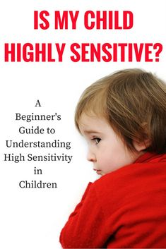 Is my child highly sensitive?  A beginners guide to understanding the highly sensitive child and high sensitivity.  What does it mean to be highly sensitive.  High sensitivity in boys and girls.