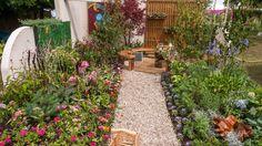 See Youth Workz Garden at RHS Hampton Court Palace Flower Show / RHS Gardening Hampton Court Flower Show, Rhs Hampton Court, The Hamptons, Stepping Stones, Palace, Youth, Gardening, Outdoor Decor, Flowers