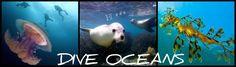 DIVE OCEANS