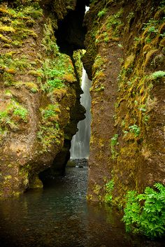 Local tips. Most tourist coming to Iceland visit Seljalandsfoss, however close by is even more amazing waterfall hidden behind the rocks. In the summer time take off your shoes and go and see it. See more on Seljalandsfoss here: http://www.seljalandsfoss.com/ Near Seljalandsfoss  Iceland by Melissa Tolero.