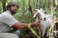 Griff Griffiths, 21, with one of four goats being used to control invasive weeds at Hawk Mountain Sanctuary.| Reading Eagle - BERKSCOUNTRY