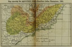 1901 Brazil coffee plantations