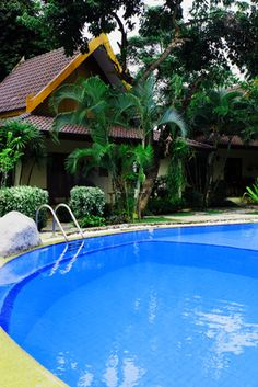 Small backyard pool landscape ideas back yard lap pools 636x421px renovations pinterest for How to add soda ash to swimming pool