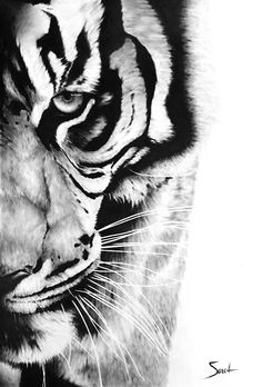Bengal tiger, art print of original oil painting by SignedSweet on Etsy. I can't believe this is a painting! Tatoo Tiger, Bengalischer Tiger, Tiger Art, Bengal Tiger, Cat Tattoo, Sketch Tattoo, Brush Tattoo, Tattoo Animal, Tiger Drawing