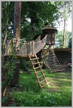 """Get great suggestions on """"playground indoor design play spaces"""". - Get great suggestions on """"playground indoor design play spaces"""". They are actually offered for - Kids Outdoor Play, Backyard For Kids, Indoor Play, Natural Playground, Backyard Playground, Playground Design, Wood Playground, Tree House Plans, Diy Tree House"""