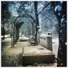 Pilsen Czech Republic #pilsen #plzen #plzeň #cz #czech #czechia #czechrepublic #české #česko #českárepublika #sculpture #statue #art #architecture #garden #tree #trees #monument #city #2016 #DiscoverCZ #snow My Photos, Sidewalk, Instagram Posts, Walkway, Pavement