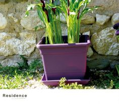 DECO pflanzeimer Yvette Métal Zinc Pot De Plantation Fleurs Pot De Fleurs Seau 22,5 cm