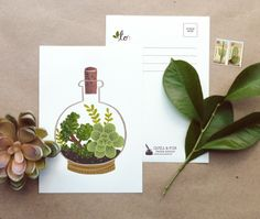 Terrarium Cork Bottle post card from Quill and Fox