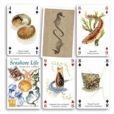 Seashore Life Playing Cards at theBIGzoo.com, a toy store featuring 3,000+ stuffed animals.