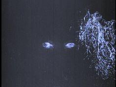 #macabre #creepy #lowresolution #lowrez #eyes #dark #darkness #video #vhs #screencap #screengrab
