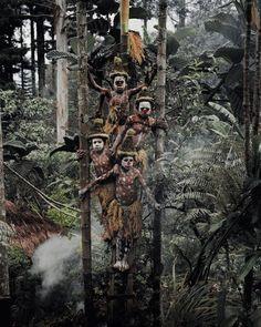 Les Gorokas d'Indonésie et de Papouasie Nouvelle Guinée