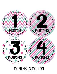 Baby Girl Monthly Baby Stickers Style #262