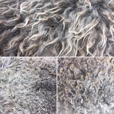 Curly wool from our trendy pelt sheepskins. You'll find several in store now. But be QUICK! They are popular! 😉