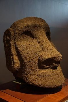 Elaborate ear structure on display at museum