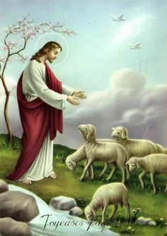 The Good Shepherd Images Du Christ, Pictures Of Jesus Christ, Christ The Good Shepherd, Lord Is My Shepherd, Heart Of Jesus, Jesus Is Lord, Image Jesus, Jesus Christ Quotes, Image Nature