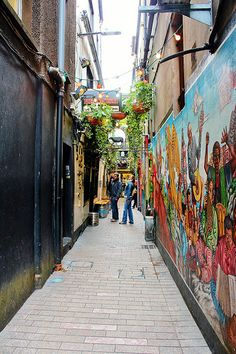 Colorful Lane, Cork Ireland