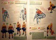 Атлетическая гимнастика - упражнения на мышцы спины IMG_9602