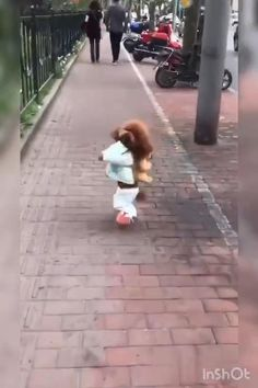 Funny Dog Memes, Funny Cats And Dogs, Funny Dog Videos, Cute Dogs, Cute Animal Videos, Funny Animal Pictures, Cute Little Animals, Cute Funny Animals, Happy Dogs