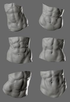 Body Reference Poses, Body Reference Drawing, Human Reference, Anatomy Reference, Drawing Abs, Human Anatomy Drawing, Human Anatomy Female, Zbrush Anatomy, Female Abs