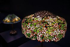 Biltmore Estate Tiffany Lamp Exhibition