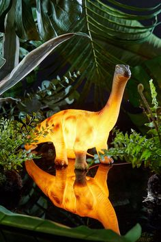 Brontosaurus Light | Urban Outfitters
