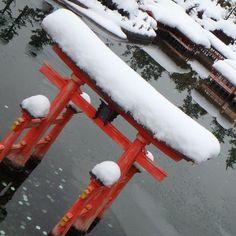 「雪の積もる厳島神社 大鳥居と雪のコントラストが美しい #日光 #東武ワールドスクエア #25分の1 #厳島神社」