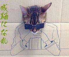 gatos-carton-curiosos-personajes7