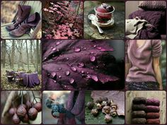 Hello purple fall ♡