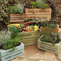 box garden... could even do this at the condo!