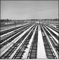 Ladder track under construction Greenwood Yard looking North c1965