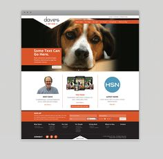 Website designed for Dave's Pet Food, a MA based pet food company. Food Company, Food Technology, Some Text, Small Business Marketing, Pet Food, Website, Pets, Projects, Animals And Pets