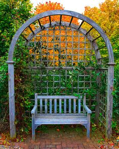garden bench and arch