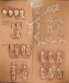 Anatomy Drawing Tutorial Simplify Human Anatomy guide by sakimichan Anatomy Study, Body Anatomy, Anatomy Drawing, Anatomy Reference, Human Anatomy, Gesture Drawing, Drawing Skills, Life Drawing, Drawing Tips