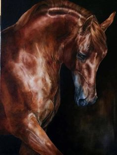 "one-word-enough: """" Some things are learned by regret, not by thinking . Horses And Dogs, Wild Horses, Most Beautiful Animals, Beautiful Horses, Pretty Horses, Horse Love, Photo Animaliere, Horse Wallpaper, Horse Artwork"