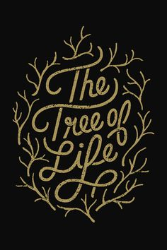 The Tree of Life by Matt Naylor