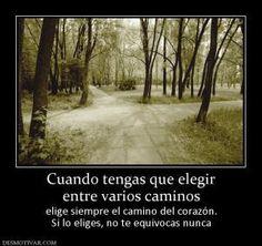 Caminos....