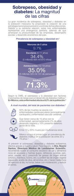 Landsteiner Scientific Infografía Sobrepeso Obesidad y Diabetes