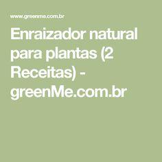 Enraizador natural para plantas (2 Receitas) - greenMe.com.br