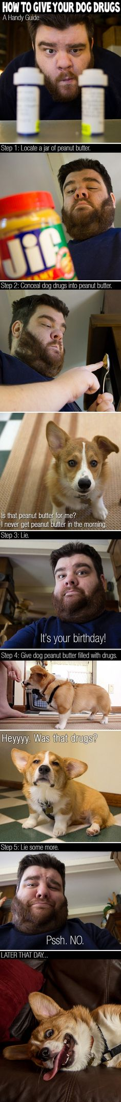 How to give your dog Drungs - Posted in Funny, Troll comics and LOL Images - LOL Heaven