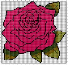Rose (80x102)
