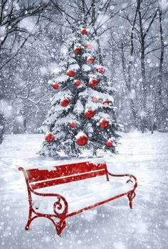 Beautiful Christmas Feelings from this Red Bench and snow Christmas Scenery, Christmas Background, Christmas Wallpaper, Christmas Love, Christmas Pictures, All Things Christmas, Vintage Christmas, Christmas Holidays, Christmas Decorations