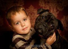 fotos bebes mascota perro