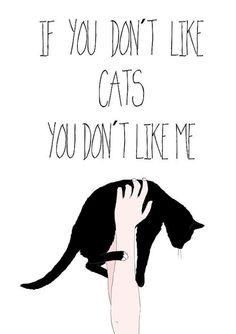 truth  quote HD: If you love cats, can you honestly say you have a true friend who doesn't like them?