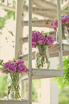 #Flowers | #Petals | #Plant | #Decoration | #Girly | #Pretty | #Bright | #Colourful | #Purple | #Vintage
