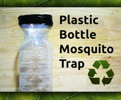 How To Make DIY Plastic Bottle Mosquito Trap - Homestead & Survival Indoor Mosquito Trap, Mosquito Repelling Plants, Uses For Plastic Bottles, Plastic Bottle Crafts, Water Bottle Crafts, Bug Trap, Mosquitos, Fly Traps, How To Make Diy