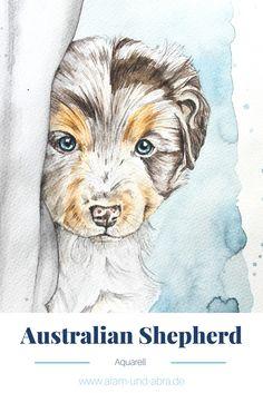Zeichnung Aquarell von Hund Buddy (Australian Shepherd). Tierportraits und Illustrationen von Aram und Abra.