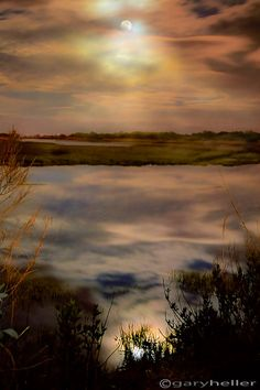 Moonlight over Marsh Dreamy Landscape by garyhellerphotograph